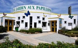 JARDIN-PAPILLONS-VANNES-2